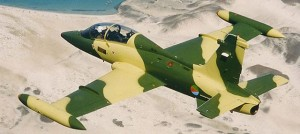 Eritrean Air Force attack plane
